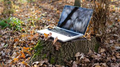 Moteurs de recherche green : l'alternative écologique au géant du web